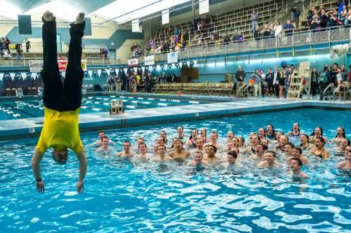 Preps Swimming Skyline Dominates In Class 4a Park City Dominates In Class 3a The Salt Lake