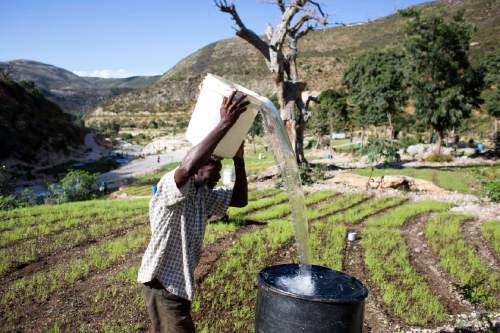In this Feb. 15, 2016 photo, a man pours water he collected from a nearby river, pictured in background, into a larger receptacle, in Fonds Verrettes, Haiti. For the last three years, a punishing drought has driven Haitians who were already barely getting by on marginal farmland even deeper into misery. Last year's crop yields were the worst in 35 years in a country where more than two-thirds of people eke out a living from agriculture, many using archaic hand tools. (AP Photo/Dieu Nalio Chery)