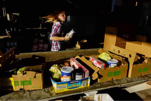 Trent Nelson  |  The Salt Lake Tribune Lensie Jessop sorts food at Southwest Recovery Mission Ministries in Apple Valley, Thursday February 25, 2016. The organization provides donated food to families in Hildale, Utah and Colorado City, Arizona.