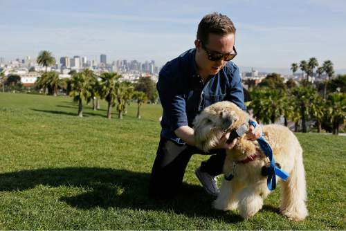 """In this Wednesday, Feb. 24, 2016 photo, Russell Gipson Shearer displays the Whistle pet tracker, a GPS-enabled device, on his dog Rocket at Dolores Park in San Francisco. Technology isn't just for humans. It's also for their furry friends. In Silicon Valley and beyond, a growing number of """"pet-tech"""" startups are selling devices to keep pets safe, healthy, entertained and connected when their owners are away. (AP Photo/Eric Risberg)"""