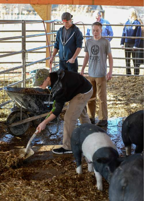Francisco Kjolseth   The Salt Lake Tribune At Roots, Utah's first farm-based charter school, in West Valley City, students get hands-on experience working at the school's farm just down the street.  A legislative task force is recommending changes to the way Utah's charter schools are funded.