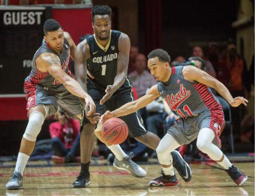 Rick Egan  |  The Salt Lake Tribune  Utah Utes forward Jordan Loveridge (21) and Brandon Taylor (11) steal the ball from Colorado Buffaloes forward Wesley Gordon (1), in the final minutes of the game, as Utah defeated Colorado, 57-55, in Pac-12 basketball action at the Huntsman Center Saturday, March 5, 2016.