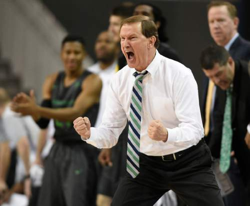 Oregon head coach Dana Altman yells to his team during the second half of an NCAA college basketball game against UCLA in Los Angeles, Wednesday, March 2, 2016. Oregon won 76-68. (AP Photo/Kelvin Kuo)