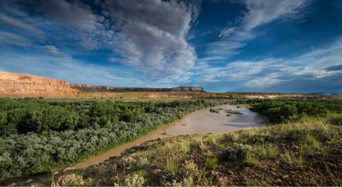 Courtesy  |  Ellen Morris Bishop  Residents of Bluff propose developing an eight-mile non-motorized trail network along this scenic stretch of the San Juan River, connecting the town with the Sand Island recreation site a few miles downstream from the southeast Utah town.
