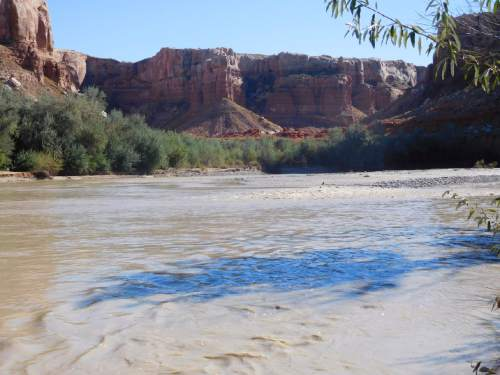 Courtesy  |  Gary Lichtenstein, Bluff City Historic Preservation Association  Residents of Bluff propose developing an eight-mile non-motorized trail network along this scenic stretch of the San Juan River, connecting the town with the Sand Island recreation site a few miles downstream from the southeast Utah town.