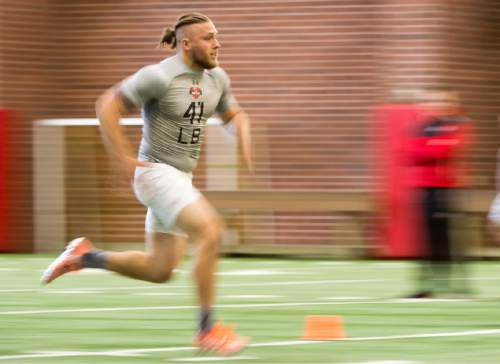 Rick Egan  |  The Salt Lake Tribune  Jared Norris (41), runs drills for the NFL scouts during the Uof U's annual Pro Day, at the University of Utah, Thursday, March 24, 2016.