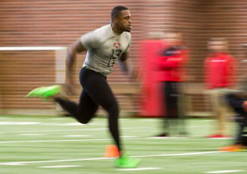 Rick Egan  |  The Salt Lake Tribune  Gionni Paul (13), runs drills for the NFL scouts during the Uof U's annual Pro Day, at the University of Utah, Thursday, March 24, 2016.