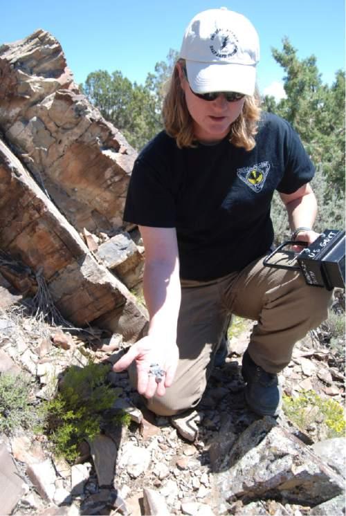 Brian Maffly  |  The Salt Lake Tribune   BLMÌs Teresa Rigby displays slugs that have struck rock art panels at UtahÌs Lake Mountains.