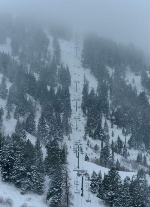 The best deal to learn to ski or... - Snowbasin Resort ...
