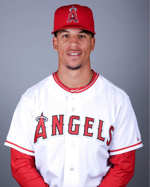 This is a 2016 photo of Quintin Berry of the Los Angeles Angels baseball team. This image reflects the Los Angeles Angels active roster as of Friday, Feb. 26, 2016, when this image was taken. (AP Photo/Chris Carlson)