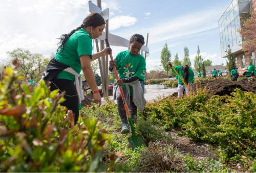 Photography by Leah Hogsten Erica Andino teaches Faesa Yousef the proper way to use a shovel while weeding the landscaping in front of Glendale Middle School. Students and volunteers spruced up the landscaping, cleaned and improved playgrounds around Mountain View Elementary and Glendale Middle Schools April 30, 2016. Saturday, April 30, 2016, More than 7,000 Comcast employees, their families and community volunteers in Utah will assisted students and community members in need at 19 service projects at local schools, city parks, and The Road Home.