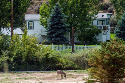 Chris Detrick  |  The Salt Lake Tribune The home where up to a dozen FLDS kids were found last week in Pocatello, Idaho Wednesday August 20, 2014.