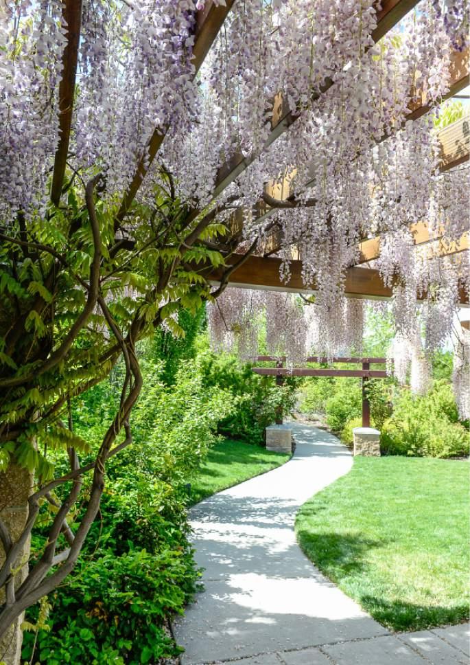 Genial Francisco Kjolseth | The Salt Lake Tribune The Conservation Garden Park At  Jordan Valley Offers A