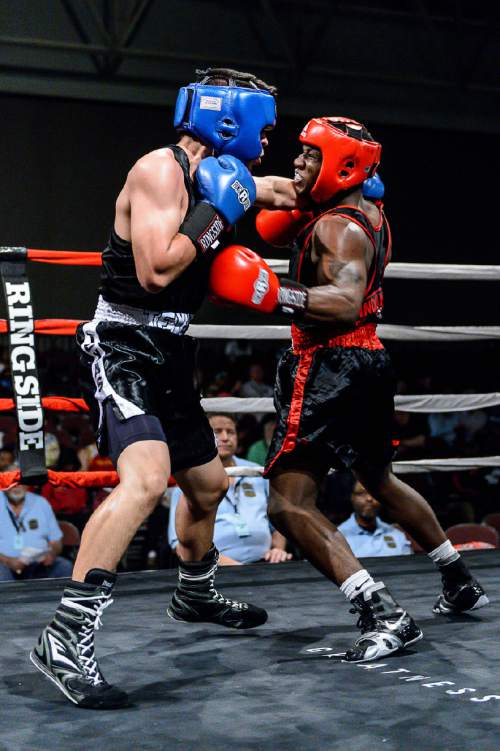 Golden Gloves: Boxing has provided a stable home for ...
