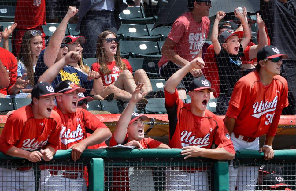 Scott Sommerdorf   |  The Salt Lake Tribune   The Utah bench and fans cheer Josh Rose's three-run double to give Utah a 4-0 lead in the first inning. Utah leads Washington 16-4 in the 8th inning, Sunday, May 29, 2016.