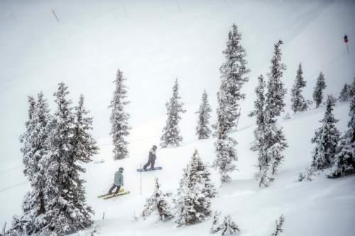 Chris Detrick  |  The Salt Lake Tribune Skiers and snowboarders go down Chip's run at Snowbird Wednesday December 30, 2015.