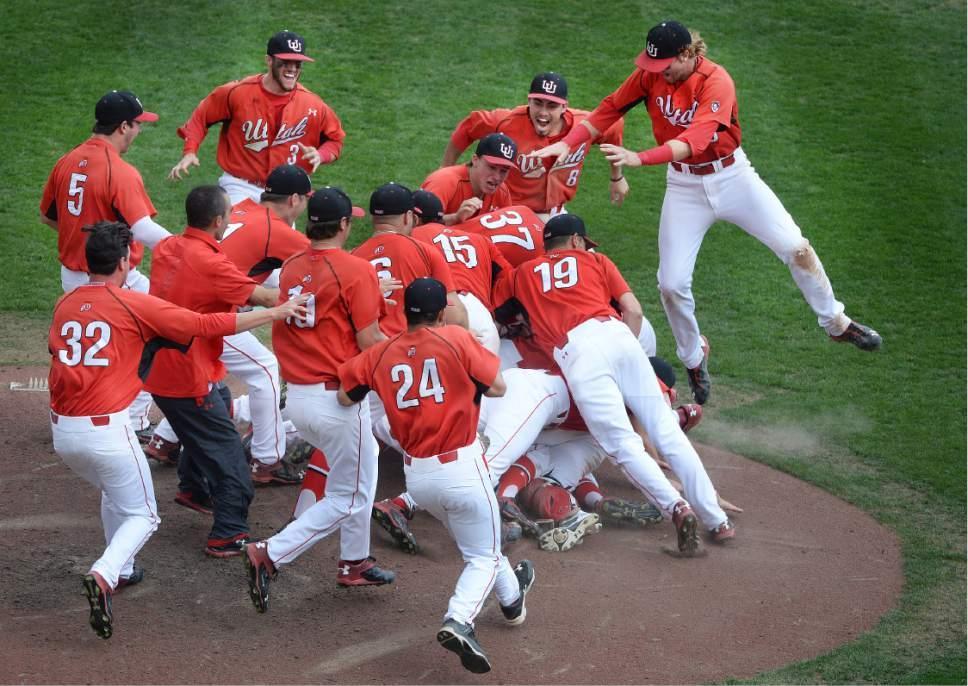 Scott Sommerdorf   |  The Salt Lake Tribune   Utah celebrates winning it's first Pac-12 baseball championship by defeating Washington 21-7, Sunday, May 29, 2016.