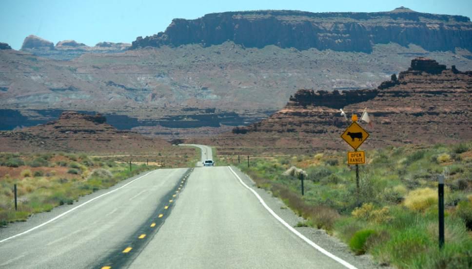 Al Hartmann  |  The Salt Lake Tribune Open range along US Highway 95 near Lake Powell in San Juan County, Utah.