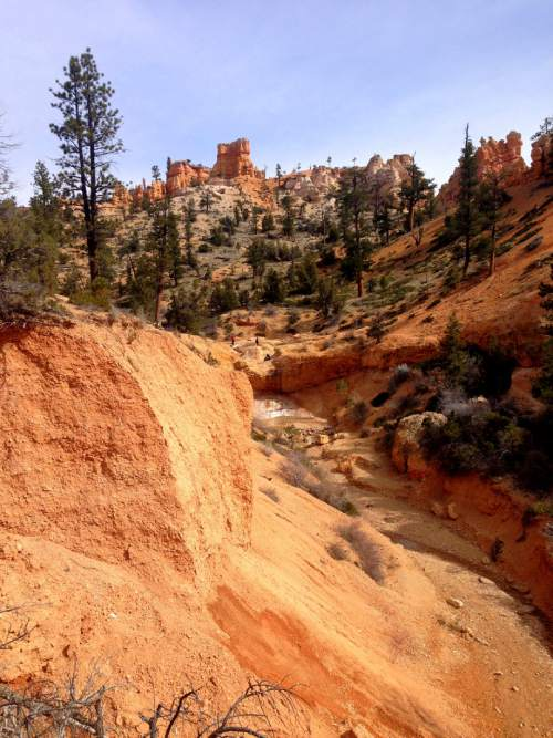Erin Alberty     The Salt Lake Tribune  Hoodoos rise above the site of a waterfall, only a trickle in early spring, near the trail to Mossy Cave on March 31, 2016 in Bryce Canyon National Park.