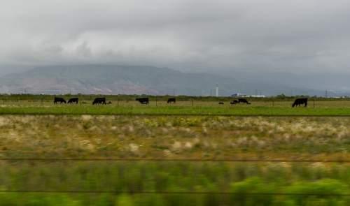 Francisco Kjolseth  |  The Salt Lake Tribune  The new Utah State Prison will be built west of Salt Lake City International Airport