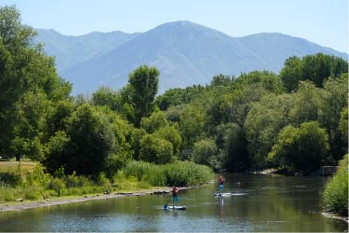 Rick Egan  |  The Salt Lake Tribune  Trenton DeLong 12, and Colton DeLong 14, paddle down the Provo River, at Utah Lake State Park, Thursday, July 14, 2016.