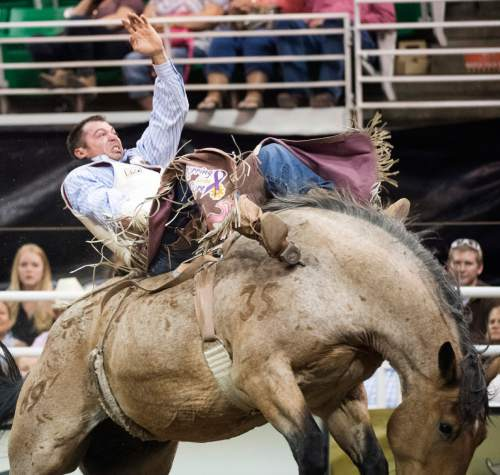 Rick Egan  |  The Salt Lake Tribune  George Gillespie, Hamilton, MT, rides in the Bareback competition, in the Days of 47 Rodeo, at Vivint Smart Home Arena, Saturday, July 23, 2016.