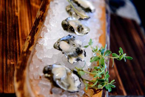 Trent Nelson  |  The Salt Lake Tribune Oysters at HSL in Salt Lake City.