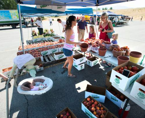 Steve Griffin / The Salt Lake Tribune  As her niece, Jersey, rocks in her swing Stephanie Oldroyd of CK Farms sells her peaches as the Farmers Market in Murray Park opened for its 35th season in Murray Friday July 29, 2016, making it Utah's oldest farmers market.  All but 14 of the 70 vendors grow their own produce.