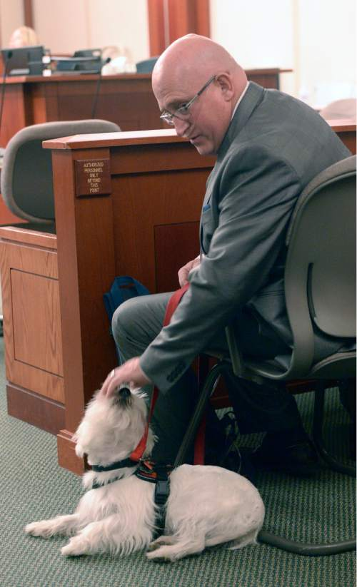 Al Hartmann     The Salt Lake Tribune Timothy Lawson, dubbed a ìfixerî for former Utah Attorney General Mark Shurtleff pets his service dog Prince before hearing in Judge Katie Bernards-Goodman's courtroom in Salt Lake City Monday April 25.   Lawson is charged with six felonies ó including counts of tax evasion, witness tampering, obstruction of justice and a pattern of unlawful conduct ó stemming from allegations that he attempted to intimidate or threaten individuals with ties to Shurtleff and his successor, John Swallow.