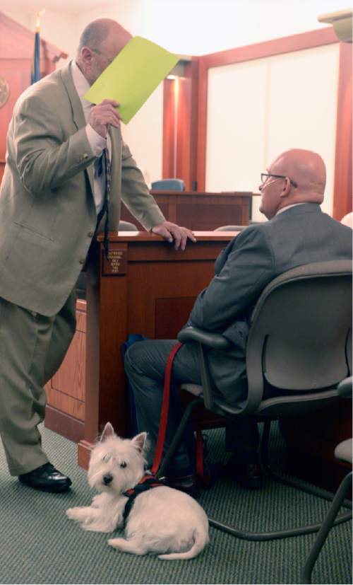 """Al Hartmann     The Salt Lake Tribune Timothy Lawson, right, dubbed a """"fixer"""" for former Utah Attorney General Mark Shurtleff speaks to his defense lawyer Ron Yengich in Judge Katie Bernards-Goodman's courtroom in Salt Lake City Monday April 25.  His service dog Prince at his side.  Lawson is charged with six felonies -- including counts of tax evasion, witness tampering, obstruction of justice and a pattern of unlawful conduct -- stemming from allegations that he attempted to intimidate or threaten individuals with ties to Shurtleff and his successor, John Swallow."""