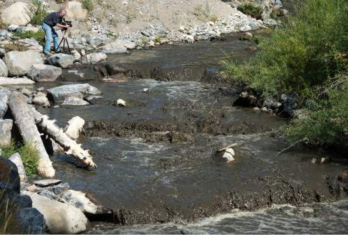 Steve Griffin / The Salt Lake Tribune  Mark Allen, of the American Fork Canyon Alliance, shoots video of the American Fork River as it runs black with silt in American Fork Canyon in American Fork, Utah Monday August 22, 2016. The river picked up the silt after running through the drained Tibble Fork Reservoir. The reservoir has been emptied because of the Tibble Fork Dam Rehabilitation Project.