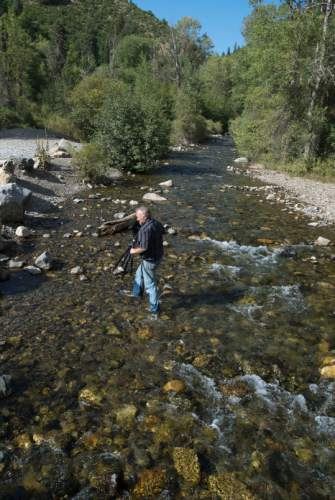 Steve Griffin / The Salt Lake Tribune  Mark Allen, of the American Fork Canyon Alliance, shoots video of the American Fork River as it runs into Tibble Fork Reservoir in American Fork Canyon Monday August 22, 2016. The river, which runs through the drained Tibble Fork Reservoir, was running black with silt after passing through Tibble Fork Dam Rehabilitation Project.