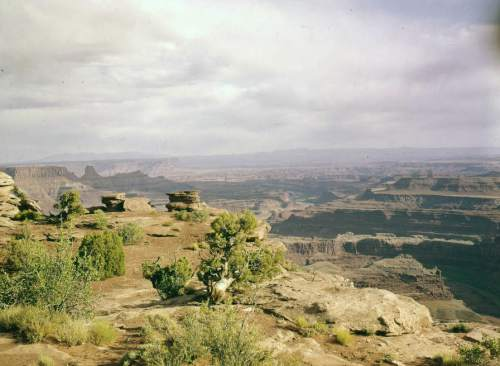Island in the Sky area at Canyonlands National Park 1950s