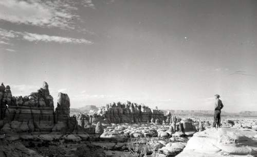 Kent Frost looks over the Needles rock formation in Canyonlands National Park sometime in the 1950s.