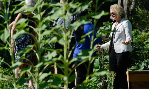 Francisco Kjolseth   The Salt Lake Tribune The first harvest of the community garden in the Liberty Wells neighborhood is celebrated by Mayor Jackie Biskupski and local gardeners on Tuesday, Aug. 30, 2016. As the latest addition to Salt Lake City's Green City Growers program, the Liberty Wells Garden at 1700 S. 700 E. is run by the non-profit Wasatch Community Gardens on city-owned land and provides plots for 44 gardeners to grow vegetables. The site is also where four resettled refugee families from Sudan and Bhutan grow vegetables through an innovative partnership between Wasatch Community Gardens and the International Rescue Committee (IRC).