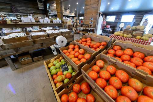 Trent Nelson  |  The Salt Lake Tribune The Market at Petersen Family Farm in Riverton.