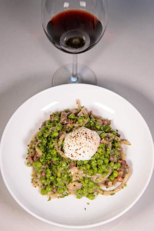 Trent Nelson  |  The Salt Lake Tribune Bucatini Carbonara at Stanza, a new Italian restaurant in Salt Lake City, Friday September 2, 2016.