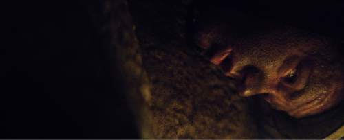 "John Jones (played by Chadwick Hopson) finds himself stuck upside-down in Utah's Nutty Putty Cave, in a scene from the movie ""The Last Descent."" Courtesy Excel Entertainment"