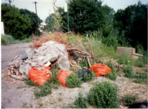 photo courtesy Lynne Olson  Trash is seen piled up in Hidden Hollow.