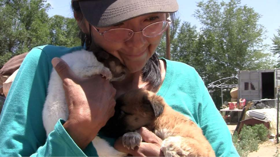 Rich Kane  |  The Salt Lake Tribune  Rescue center operator Yvonne Todacheene says goodbye to a pair of puppies.