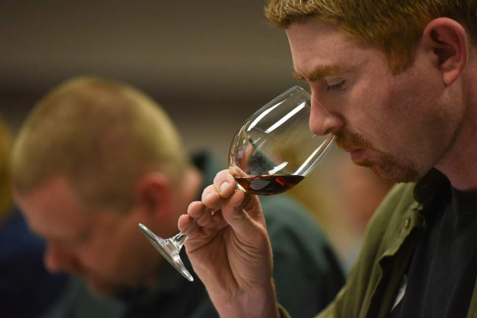 Francisco Kjolseth  |  The Salt Lake Tribune Matt Rees, an employee of a liquor store in Park City, lets his nose take in the aroma of a wine during a recent wine training class sponsored by the DABC. The Utah Department of Alcoholic Beverage Control got funding from the 2016 legislature for the training, something the public has been demanding for many years.