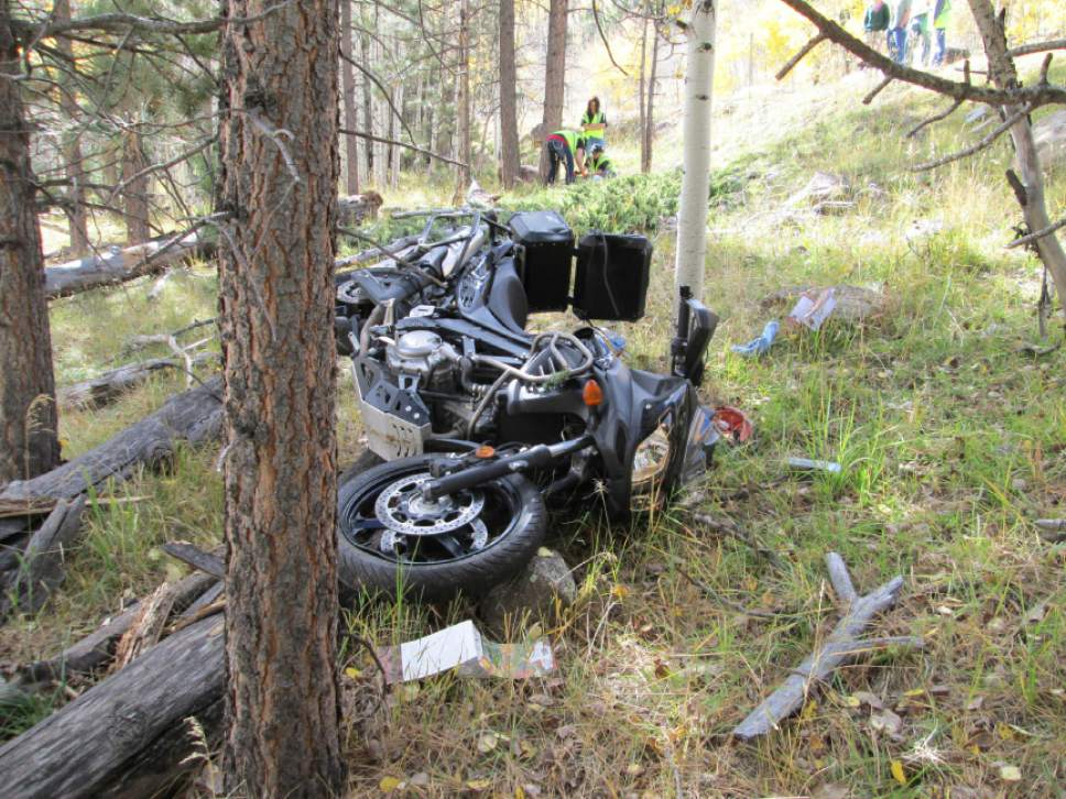 (Courtesy  |  Utah Highway Patrol) A Colorado man died Oct. 11, 2014, after a tree fell right in front of him on State Route 12 in Garfield County, according to the Utah Highway Patrol. Boy Scouts responsible for the toppling of the tree will not be charged, according to the Garfield County attorney.