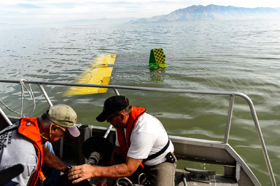 Trent Nelson  |  The Salt Lake Tribune Fred Austin and Chad Wardle of the Emergency Response Team for the Great Salt Lake work to attach an anchor and buoy to a fixed-wing plane sites the Great Salt Lake where it crashed Thursday October 13, 2016.