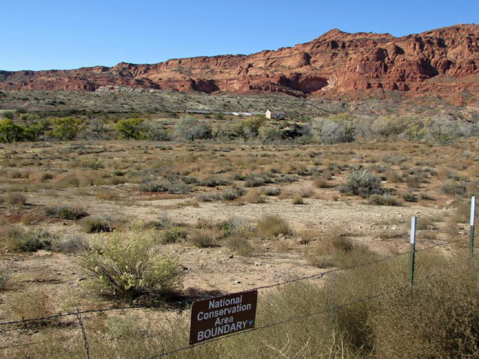 Tom Wharton     Tribune file photo Red Cliffs National Conservation Area.