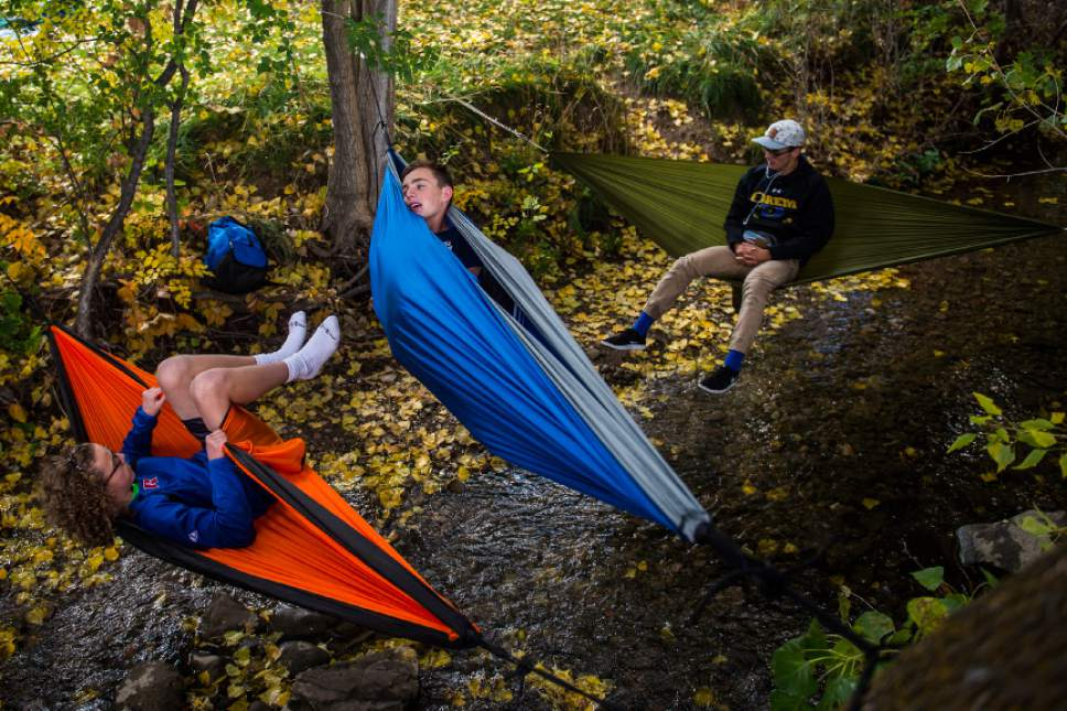 Chris Detrick  |  The Salt Lake Tribune (L-R) Richfield's Ethan Murray, Max Kemp and Orem's Junior Hallam relax in hammock during the UHSAA State Cross Country Championships at Sugar House Park Wednesday October 19, 2016.