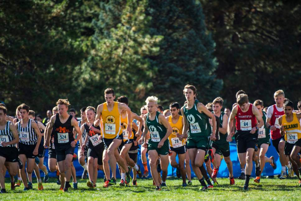 Chris Detrick  |  The Salt Lake Tribune Runners in the 4A division compete during the UHSAA State Cross Country Championships at Sugar House Park Wednesday October 19, 2016.