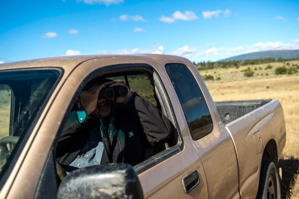 Chris Detrick  |  The Salt Lake Tribune Rancher Bobby Ortega looks for his grazing cattle in Rio Grande del Norte National Monument, New Mexico Friday September 30, 2016.