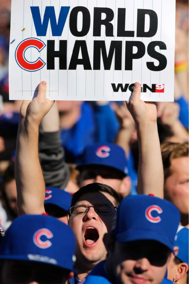 4b5c2976a Chicago Cubs fans celebrate during a rally in Grant Park honoring the World  Series baseball champions