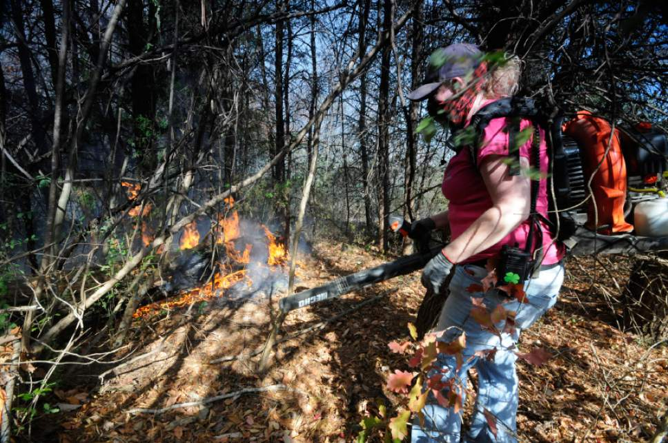 Volunteer firefighter's Sheri Torbett, with the Sequoyah Volunteer Fire Department, uses a leaf blower  to turn back approaching flames near the Mowbray Volunteer Fire Hall in Soddy-Daisy, Tenn.  Federal authorities say warmer-than-average temperatures and no rainfall are deepening a drought that's sparking forest fires across the Southeastern U.S   (Tim Barber/Chattanooga Times Free Press via AP)