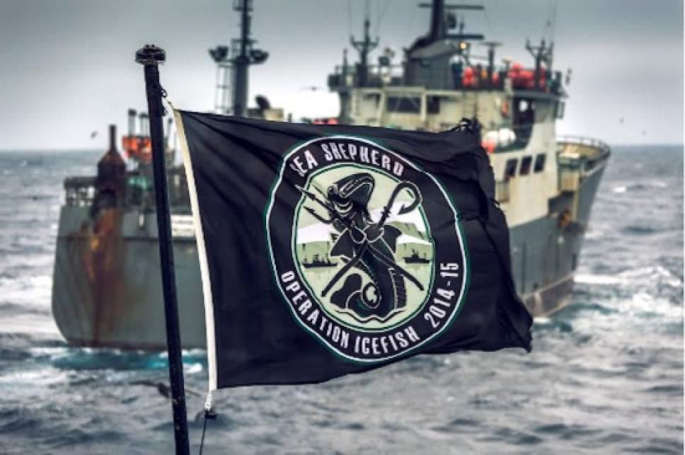 "   Animal Planet  Sea Shepherd goes after poaches in the Antarctic in ""Ocean Warriors."""